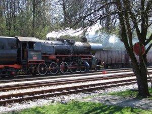 33-504 at Bos. Poljana