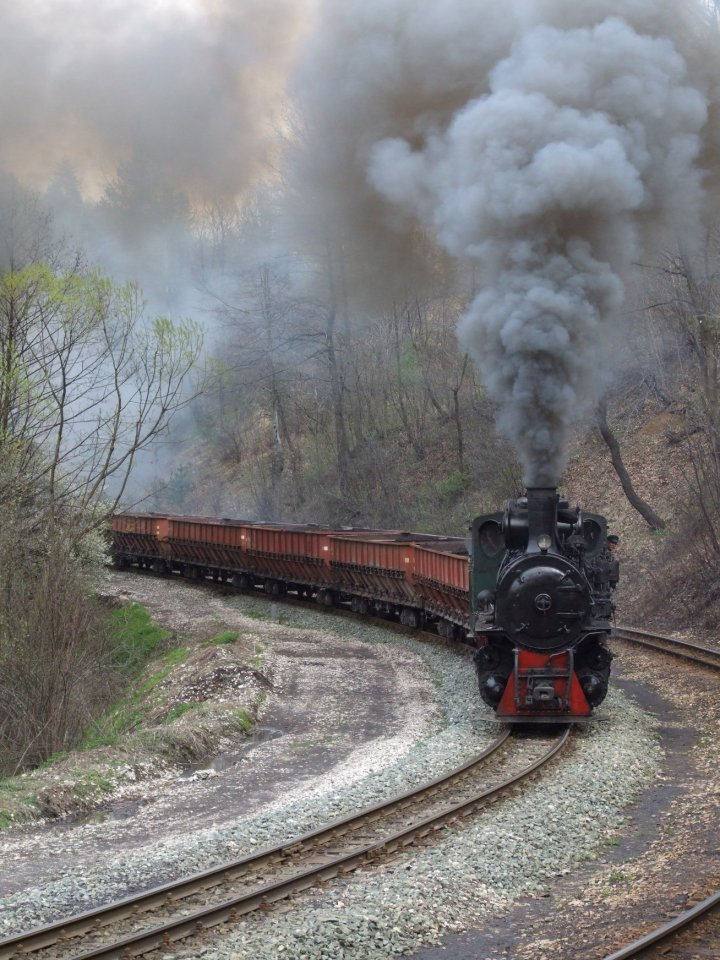 Freight charter on the line Oskova-Grivice [1]