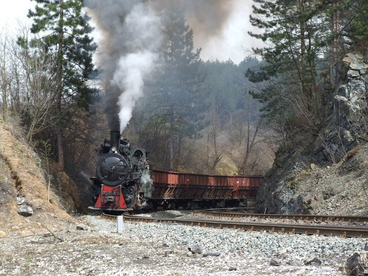 Freight charter on the line Oskova-Grivice [3]