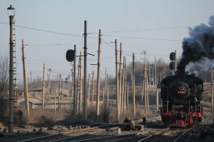 SY 1195 steams through a forest of poles