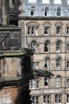 An eagle looks out from the Scott monument