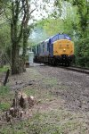 "Class 37 diesel 37219 ""Shirley Ann Smith"" approaches a foot crossing between Thuxton and Garvestone"