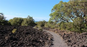 The summit path cuts through the lava fields