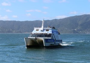 The ferry to Somes Island