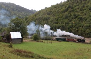 Our loco, 764-211, passes through the well watered Vaser Valley