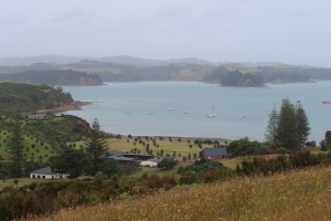 A view across Rotoroa Island towards Home Bay