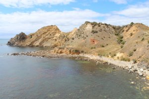 The rocky promontory at Huriawa