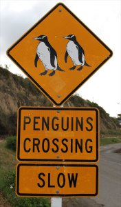 One of the Penguin crossing signs on Waterfront Road