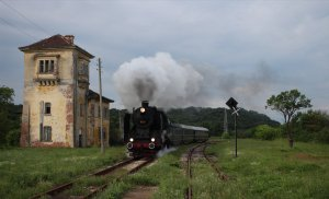 03.12 runs through Knizhovnik