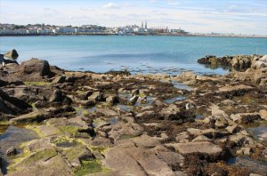 Dún Laoghaire as seen from the Forty Foot
