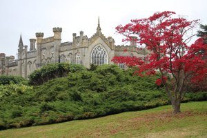 A view of Sheffield Park House from the garden