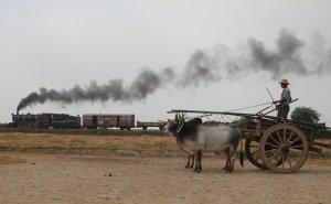 An ox and cart driver looks on as our train heads towards Kyaikkathr