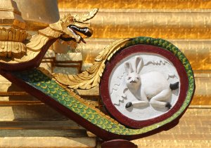 A startled rabbit at Sule Pagoda